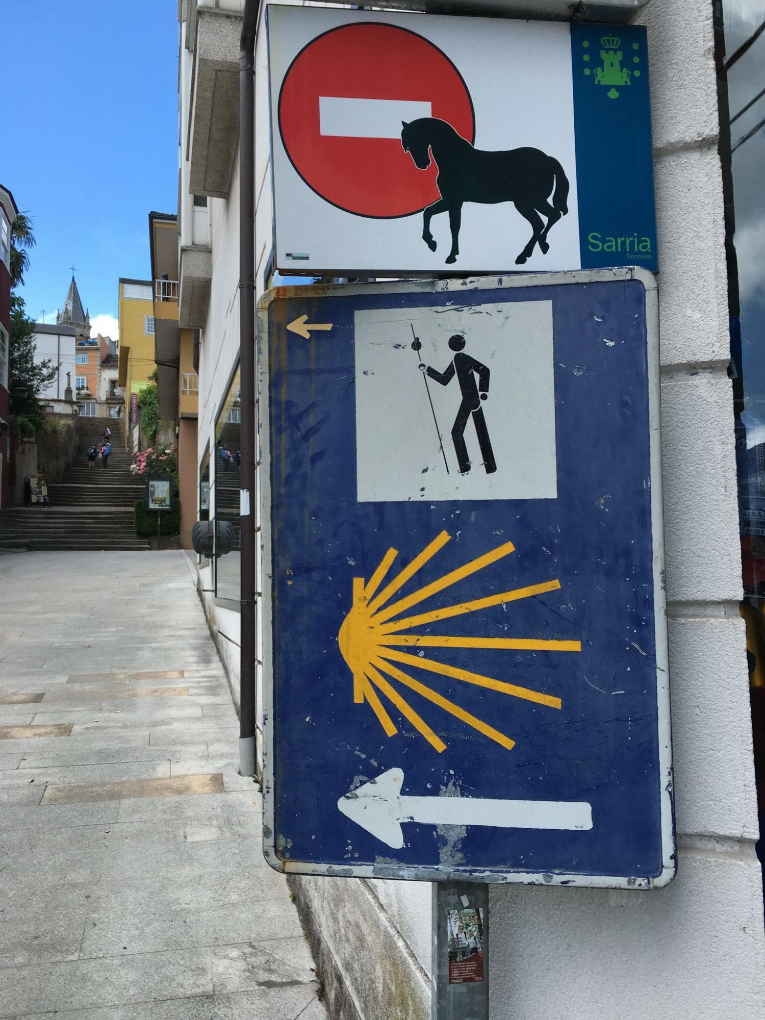 Камино де Сантьяго – куда приводят мечты