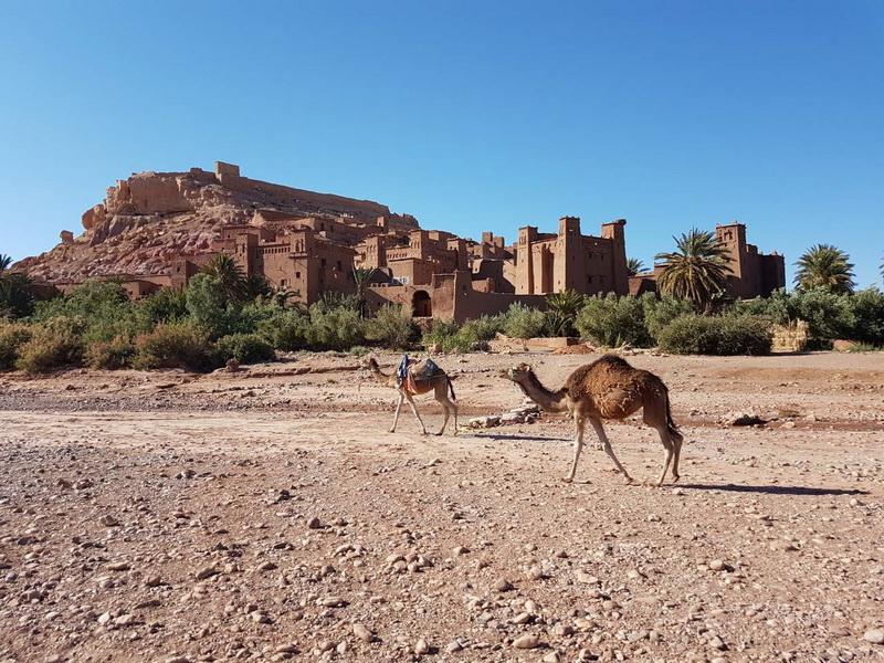 "<img class=""pull-center"" title=""Уарзаззат, Марокко"" src=""http://www.journeys6senses.com/wp-content/uploads/2018/10/IMG_9400.jpg"" alt=""Где жить в Марокко"">"