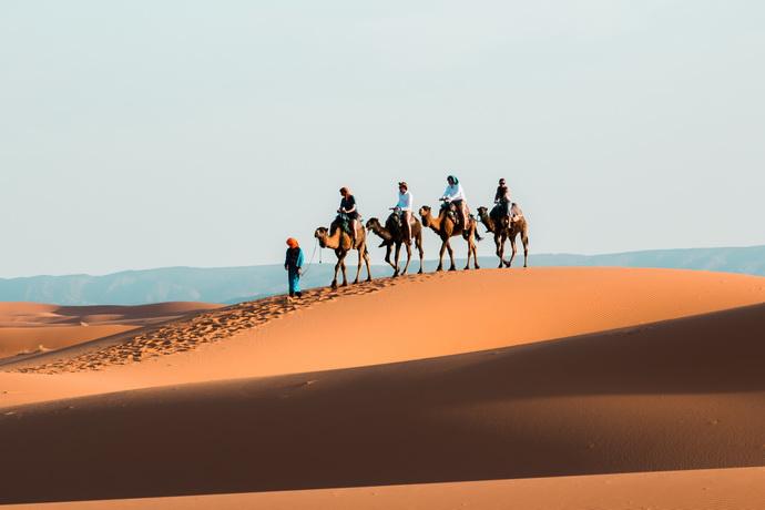 Пустыня Сахара в Марокко, караван верблюдов