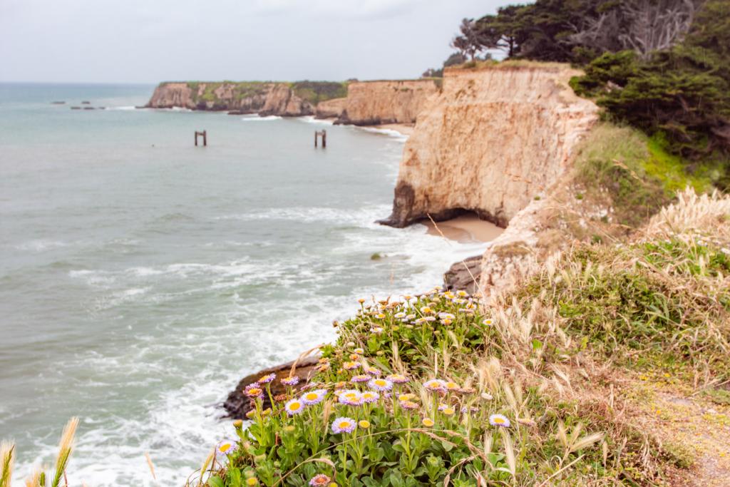 "<img class=""aligncenter lazy"" data-src=""http://www.journeys6senses.com/wp-content/uploads/2020/01/image-3-1024x683.png"" alt=""Калифорнийское побережье"" title=""На фото скалы Калифорнийского побережья, Калифорния, США"">"