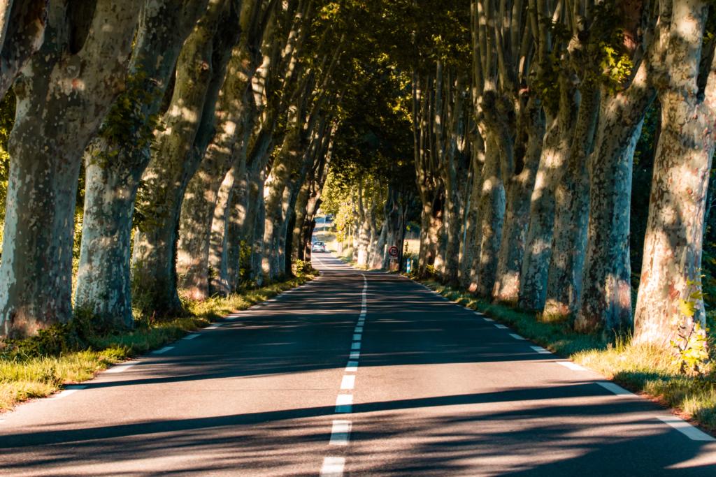 "<img class=""aligncenter lazy"" data-src=""http://www.journeys6senses.com/wp-content/uploads/2020/03/image-34-1024x683.png"" alt=""Прованс, дорога"" title=""На фото классическая дорога в окружении платанов, Франция, Прованс"">"