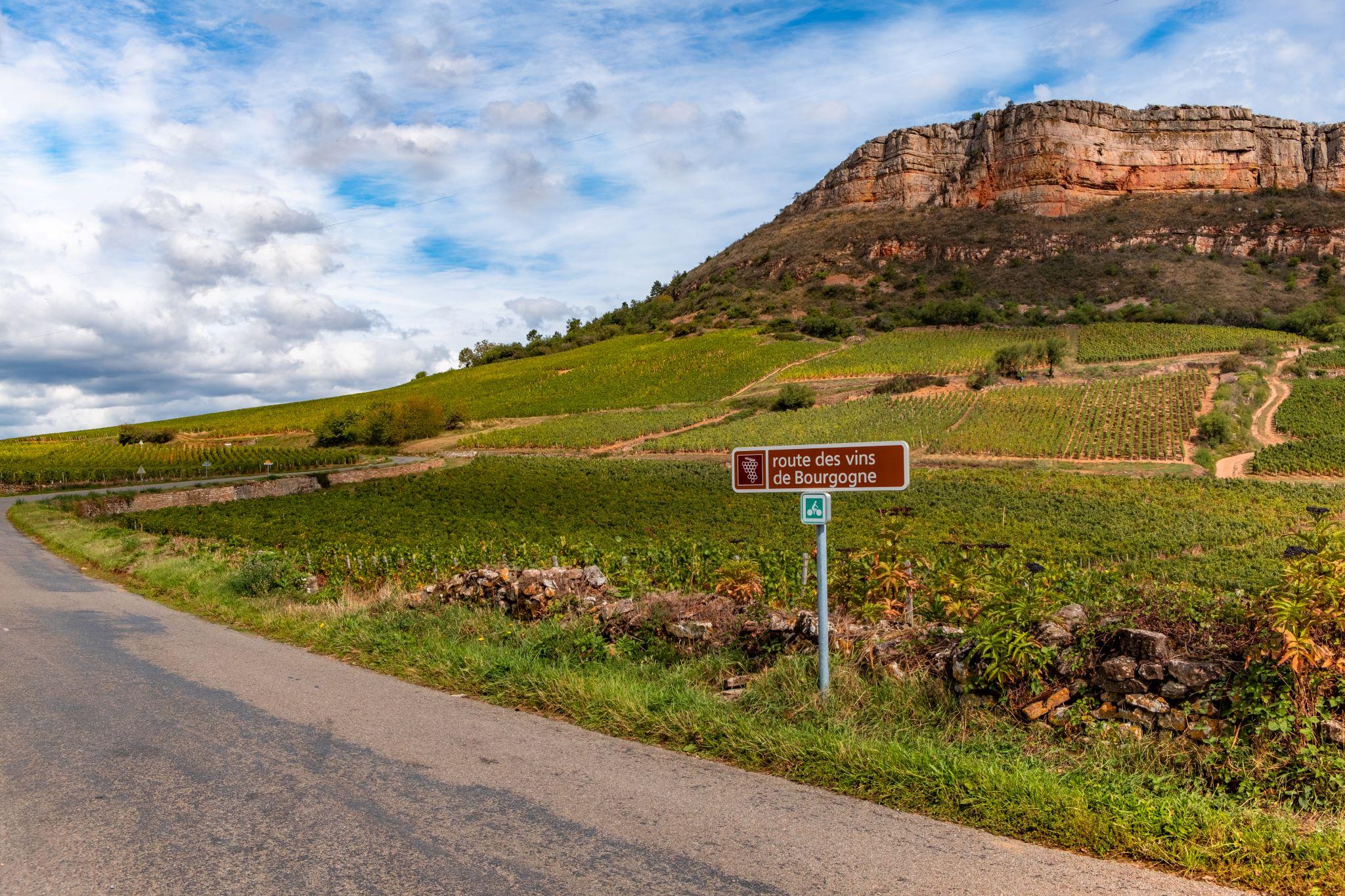 Винно-гастрономический тур в Бургундию – попробовать Францию на вкус.