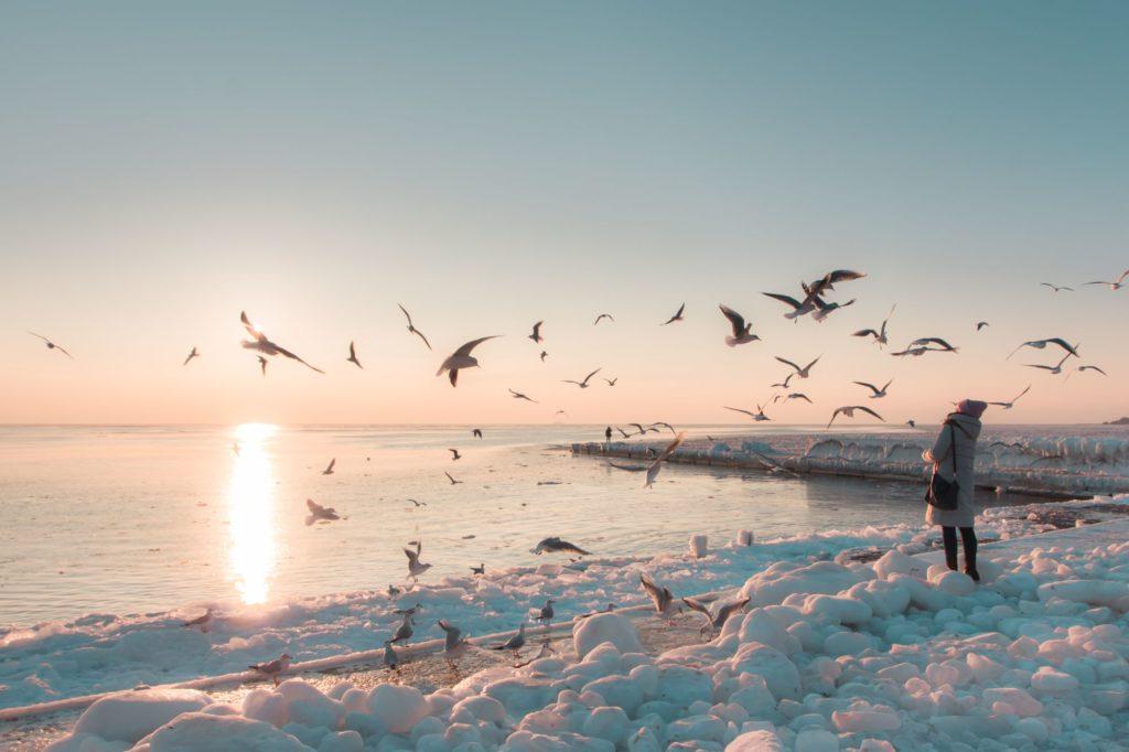 "<img class=""pull-center"" title=""море замерзло в Одессе"" src=""https://www.journeys6senses.com/wp-content/uploads/2020/12/IMG_3306-1024x682.jpg"" alt=""Одесса зимой чем заняться"">"