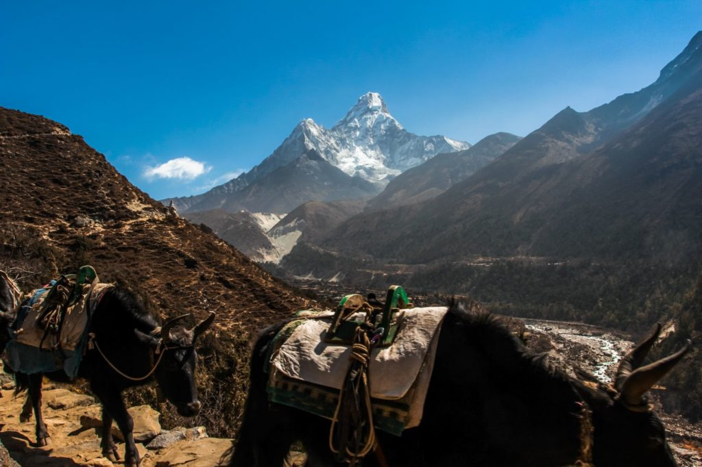 "<img class=""pull-center"" title=""Гималаи, Непал"" src=""https://www.journeys6senses.com/wp-content/uploads/2021/01/IMG_9385-1024x682.jpg"" alt=""Как попасть в Непал"">"