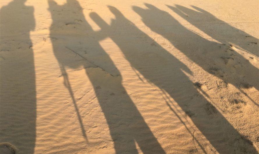 Похід Олешківськими пісками – відгук про самостійний похід 8 березня